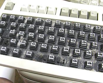 20090713a.jpg