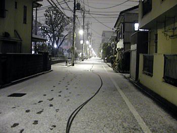 20100201b.jpg